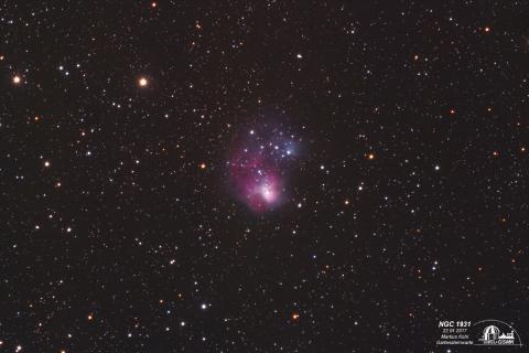 NGC 1931, Ausschnitt 60%